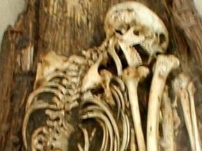 Обнаружено самое крупное древнее кладбище в Испании