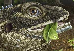 Новости науки: Палеонтологи назвали гигантскую древнюю ящерицу в честь Джима Моррисона