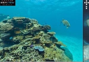 В интернете появятся панорамы Большого Барьерного рифа