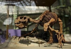 Ученые: Динозавры страдали от вшей