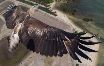 Самые красивые фотографии, сделанные с дронов