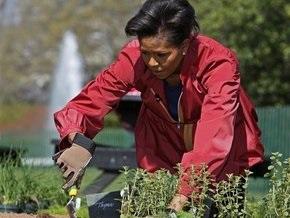 Мишель Обама засадила огород у Белого дома