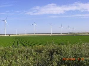 Компания WKN, проектировщик ВЭС, инвестирует в украинский рынок ветроэнергетики
