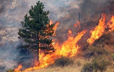 В центральных и южных областях Украины ожидается чрезвычайная пожарная опасность