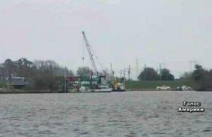 США: Луизиана не может возобновить экспорт устриц после утечки нефти