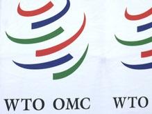 Россия считает вступление Украины в ВТО преждевременным