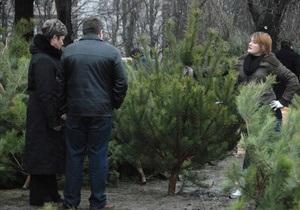 В 2012 году средняя цена новогодней елки в Украине составит 50 грн