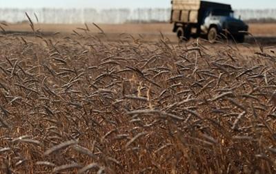 На заминированных полях Донбасса осыпается урожай