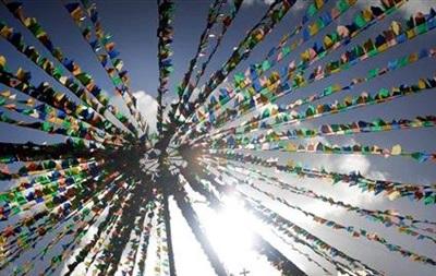 В ботсаду пройдет фестиваль Небо