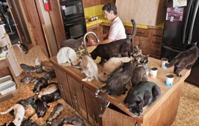 В Санкт-Петербурге домашние животные довели юношу до самоубийства