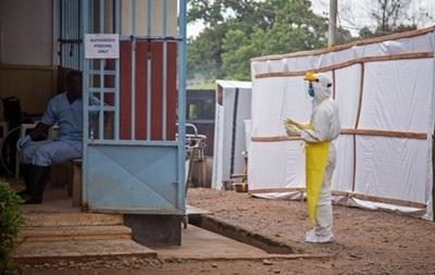 Японские ученые разработали быстрый способ определения вируса Эбола