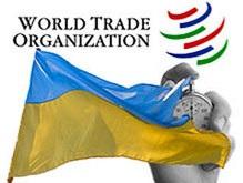 Украинцев пока не интересуют преимущества ВТО