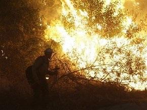 Власти США заявляют, что причиной пожаров в Калифорнии стал поджог