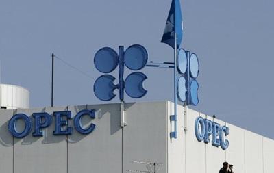 Нефть резко подешевела в преддверии заседания ОПЕК