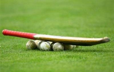 Судья умер от удара мяча в лицо в поединке по крикету