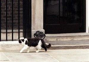 В резиденции британского премьер-министра появится кот