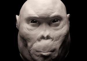 Homo rudolfensis был отдельным видом протолюдей - ученые
