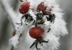 Занятия в киевских школах из-за морозов отменять не будут