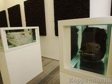 PinchukArtCentre продлевает выставку Reflection до 24 февраля