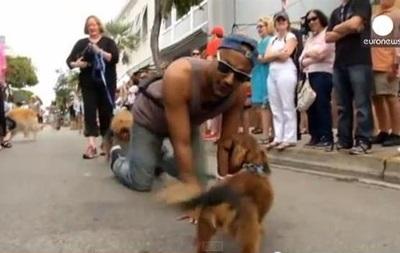 В США по случаю Нового года прошел парад собак
