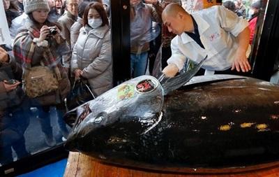 В Японии гигантский тунец ушел с молотка за 37 тысяч долларов