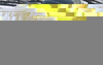 Дмитрий Ярош ранен