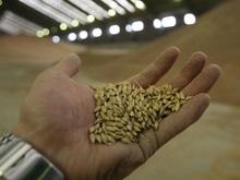 Financial Times: Украина снизила мировые цены на пшеницу