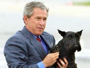 Буш понял, что он обычный человек