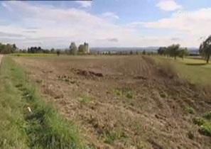 Сельхозвысотки - земледелие будущего