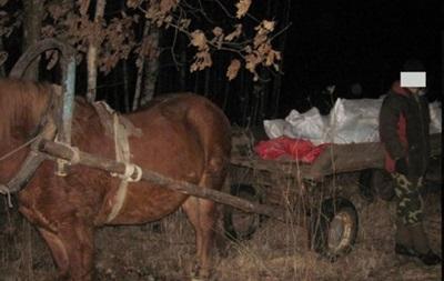 Мужчина пытался перевезти в Россию на телеге почти полтонны сала