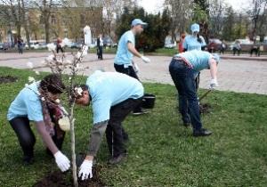Волонтери компанії «Київстар» відновили Сквер Магнолій у Житомирі