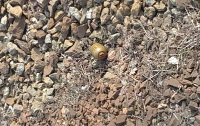 В Киеве на железнодорожной станции нашли боевую гранату