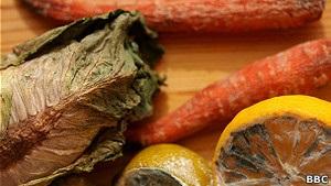 Би-би-си: Можно ли определить годность пищи по запаху?