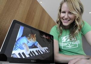 В США проведут фестиваль кошачьего видео