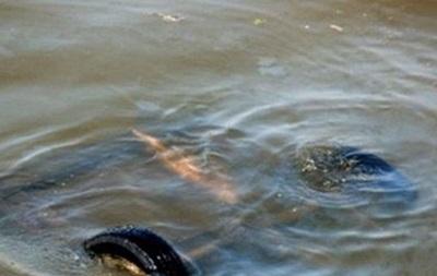 На Волыни затонуло авто с детьми