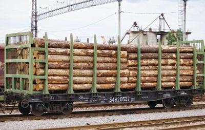 В Украине запретили вывоз необработанной древесины