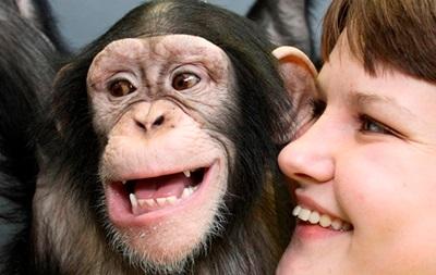 Обезьяны и люди улыбаются одинаково – ученые