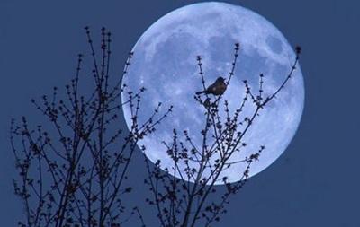 Земляне в ночь на 2 июля увидят  голубую  Луну
