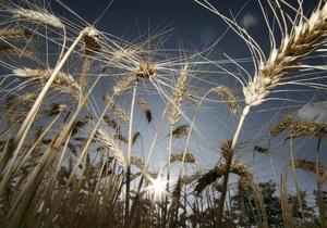 DW: Засуха в Европе может привести к резкому росту цен на продукты