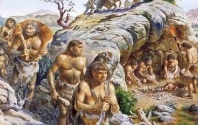Ученые выяснили, что способствовало эволюции человеческого мозга
