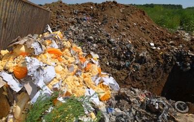 В РФ отчитались о первой неделе уничтожения продуктов