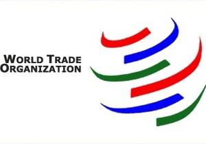 Вступление России в ВТО: Грузия заявила о провале переговоров