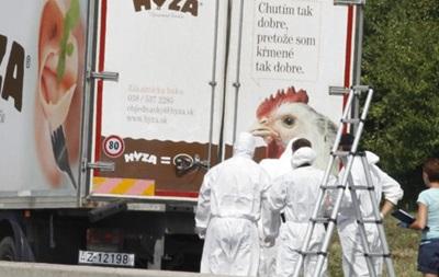 В грузовике на востоке Австрии оказалось более 70 тел мигрантов