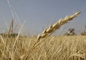 Эксперт: Сокращение экспорта зерна приобретает угрожающие масштабы для Украины
