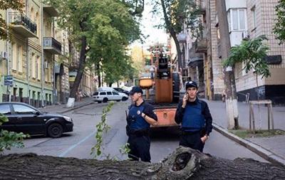 У Києві через дерево, що впало, змінено кілька тролейбусних маршрутів