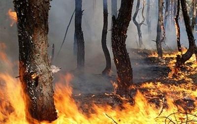 В Украине объявлена чрезвычайная пожароопасность
