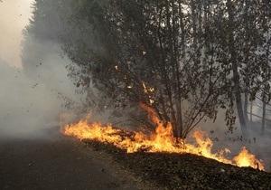 В МЧС РФ заявили о стабилизации пожарной ситуации в пяти регионах