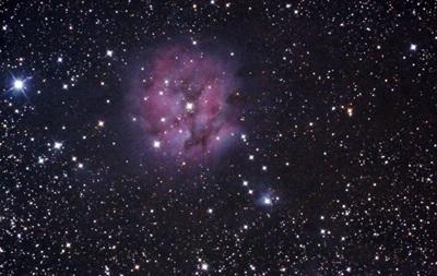У звезды в созвездии Лебедя начали искать инопланетян
