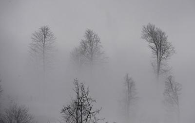 Украину окутают туманы, дожди ослабнут