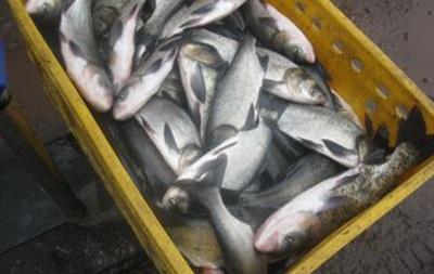 В водоемах Украины вырос вылов рыбы